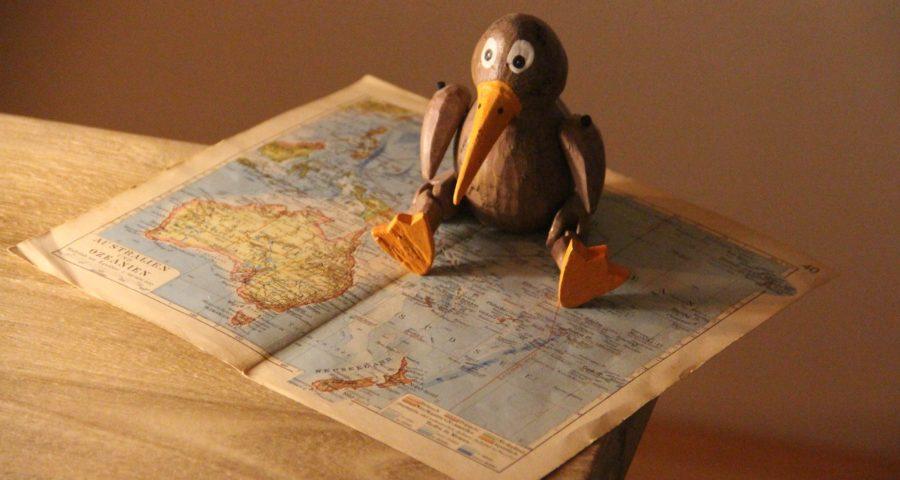Vogel Kiwi aus Holz auf Landkarte