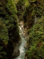 Zauberwald - Klamm