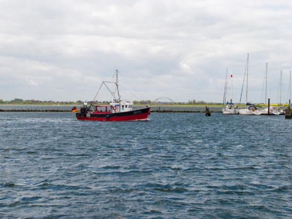 Fischerboot im Hafen von Burgstaaken