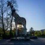 Gottfried CC Hagenbeck on Giraffe, Hamburg, Germany