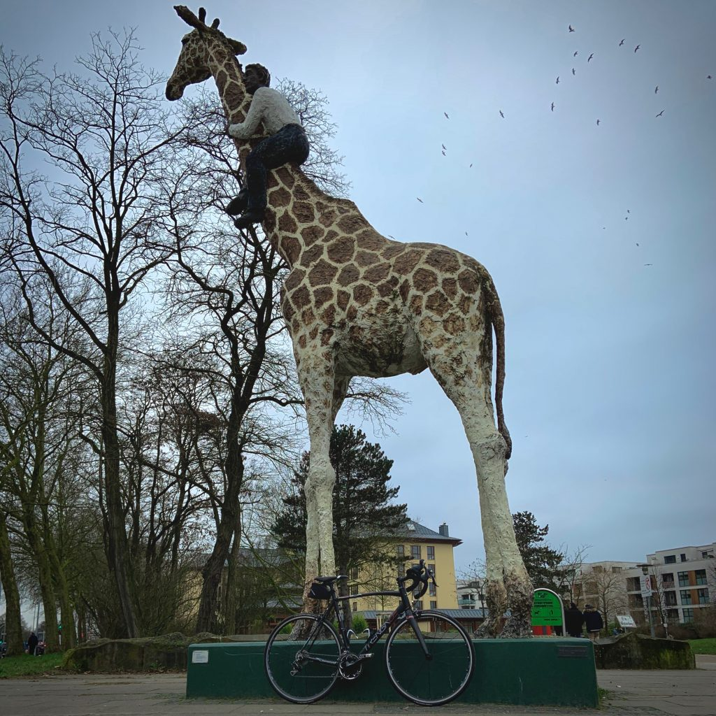 Gottfried CC Hagenbeck on Giraffe, Hamburg, Germany