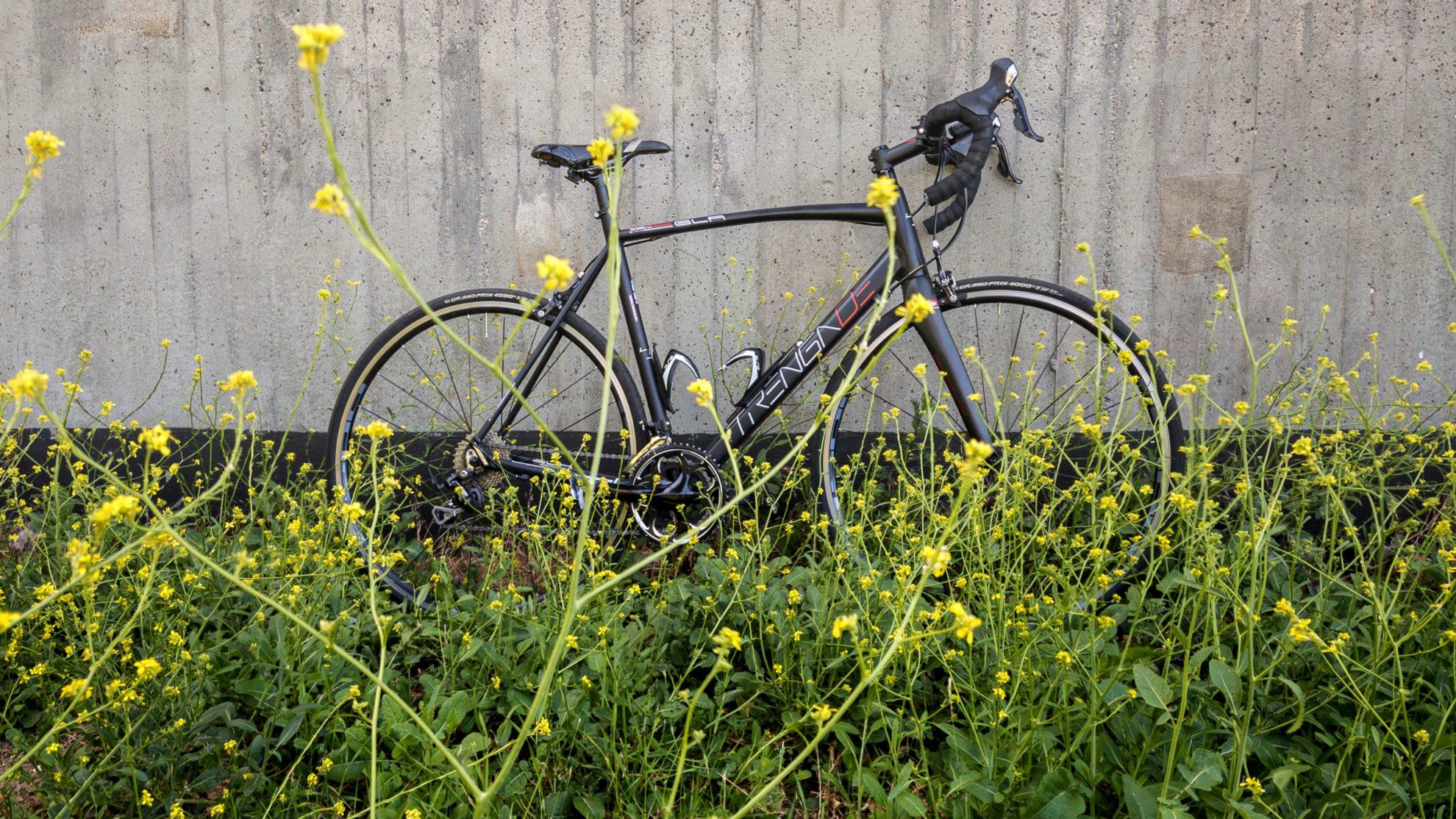 Das Rennrad und Köhlbrandbrücke