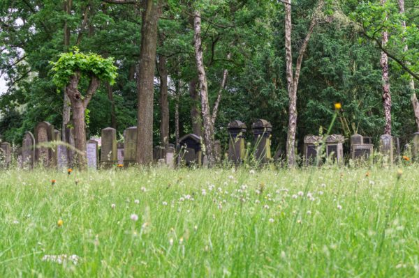 Jewish cemetery Langenfelde, Hamburg, Germany