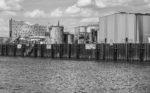 Elphie und Industrie in schwarz-weiß