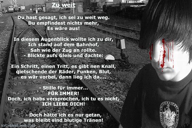 """Gedicht """"Zu weit"""""""