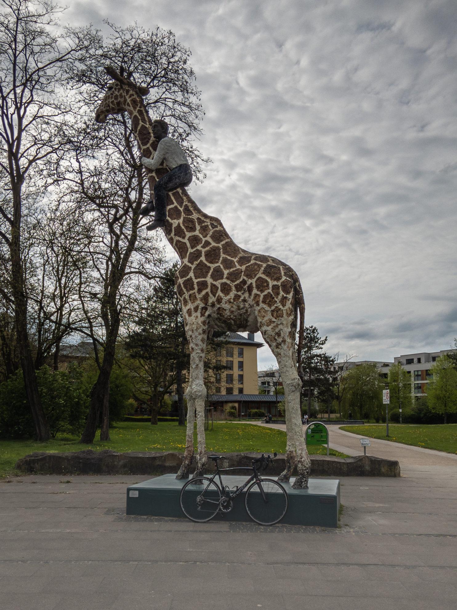 Gottfried CC Hagenbeck klettert auf Giraffe
